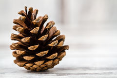 Pine Cones. Natural dry pine cones on wooden white table background Royalty Free Stock Images