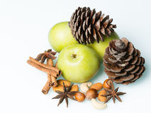 Pine cones among nuts. With fresh green apples royalty free stock images