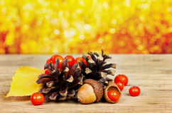 Pine cones, oak acorn and rowanberry on wooden board against bokeh background. Autumn concept Stock Photography