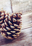 Pine cones on old wooden background Royalty Free Stock Photos