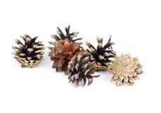 Pine cones over white background Stock Photo