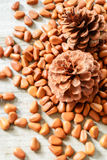 Pine cones and pine nuts Royalty Free Stock Photography