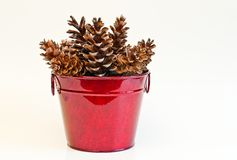 Pine Cones in Red Bucket Stock Photography