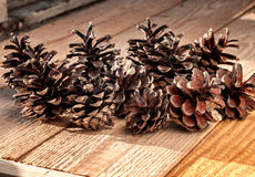 Pine cones. Several dry pine cones on the wooden table Stock Photography