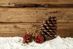Pine cones on snow Stock Photos