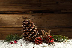 Pine cones and snow decoration Stock Image