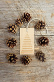 Pine cones and tag Royalty Free Stock Images