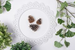 Pine Cones on Tray with Foliage Flat Lay Top View. A Pine Cones on Tray with Foliage Flat Lay Top View Stock Image