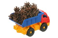 Pine cones in the truck Royalty Free Stock Photos