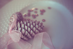 Pine cones on white dish with ribbon, purity decoration. Stock Images