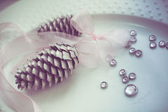 Pine cones on white dish whith ribbon, purity decoration. Stock Images