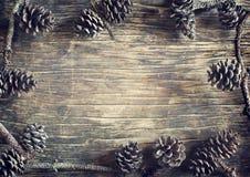 Pine cones. Royalty Free Stock Image