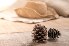 Pine cones on wooden background Stock Images