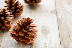 Pine cones on the wooden board Royalty Free Stock Image