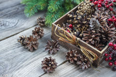 Pine cones in a wooden box Royalty Free Stock Image