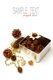 Pine corn decorations in metal box Royalty Free Stock Image