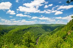 Pine Creek Gorge, the Grand Canyon of Pennsylvania. Royalty Free Stock Photo