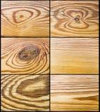 Pine decor Stock Photos
