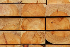 Pine End Grain Background. End grain view detail of a pine wood`s pile of construction timber royalty free stock photo