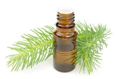 Pine essential oil Stock Image