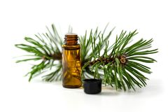 Pine essential oil bottle and tree branch isolated on white. Background stock image