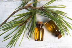 Pine essential oil and glass drops on white background royalty free stock images