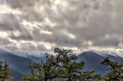 Pine filled mountain view royalty free stock photos
