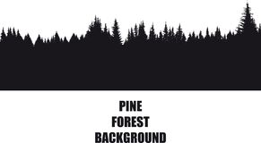 Pine Forest Background. Dark background silhouette of a pine forest isolated on a white background Stock Photo