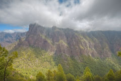 Pine Forest at Caldera de Taburiente. Pine forest around a volcanic mountain, part of the caldera de taburiente, in la palma, in hdr stock images