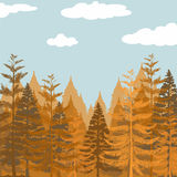 Pine forest at daytime Royalty Free Stock Photography