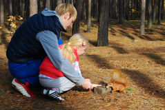 In the pine forest father and daughter feed a squirrel nuts. Royalty Free Stock Photography