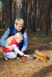In the pine forest father and daughter feed a squirrel nuts. Royalty Free Stock Photo