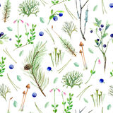 Pine forest floral seamless pattern. Royalty Free Stock Photos