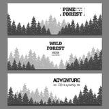 Pine forest horizontal banner vector set Royalty Free Stock Photos