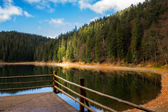 Pine forest and lake near the mountain early in the morning. View on lake near the pine forest early in the morning on mountain background in autumn Stock Images