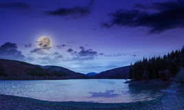 Pine forest and lake near the mountain late at night stock photo