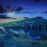Pine forest and lake near the mountain at night Stock Photography