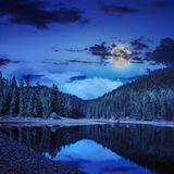 Pine forest and lake near the mountain at night Royalty Free Stock Photo