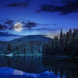 Pine forest and lake near the mountain at night Stock Images