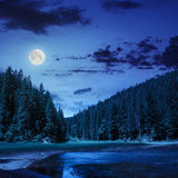 Pine forest and lake near the mountain at night Royalty Free Stock Images