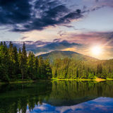 Pine forest and lake near the mountain at sunset Royalty Free Stock Images