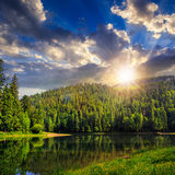 Pine forest and lake near the mountain at sunset Stock Photography