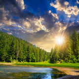 Pine forest and lake near the mountain at sunset Royalty Free Stock Photo