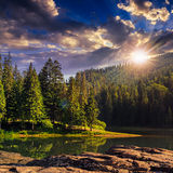 Pine forest and lake near the mountain at sunset Stock Images