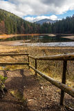 Pine forest and lake near the mountain Stock Images