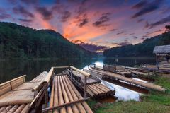 Pine forest park at Pang-ung, Mae Hong Son Province Royalty Free Stock Photos