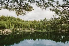 Pine forest reflected in the quary lake. Ukraine Royalty Free Stock Photos