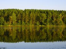 Pine forest reflection. On Echo Lake in Moose Lake State Park, MN Royalty Free Stock Photo