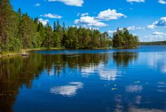 Pine forest reflection in the lake. In the Salamajarvi National Park, Finland Royalty Free Stock Images