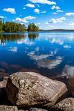 Pine forest reflection in the lake Stock Images